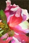 Flamenco_2011 100x150, Patrizio Vellucci a Spazio Tadini per Fogli di carta
