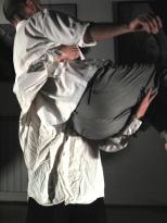 Coreografia d'Arte 2012, L'occhio della pittura di Emilio Tadini