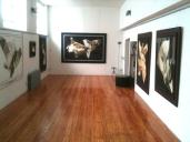 Ex studio Emilio Tadini - mostra Guzzoni