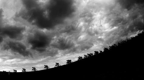Alessandro Trovati, Tour De France-online