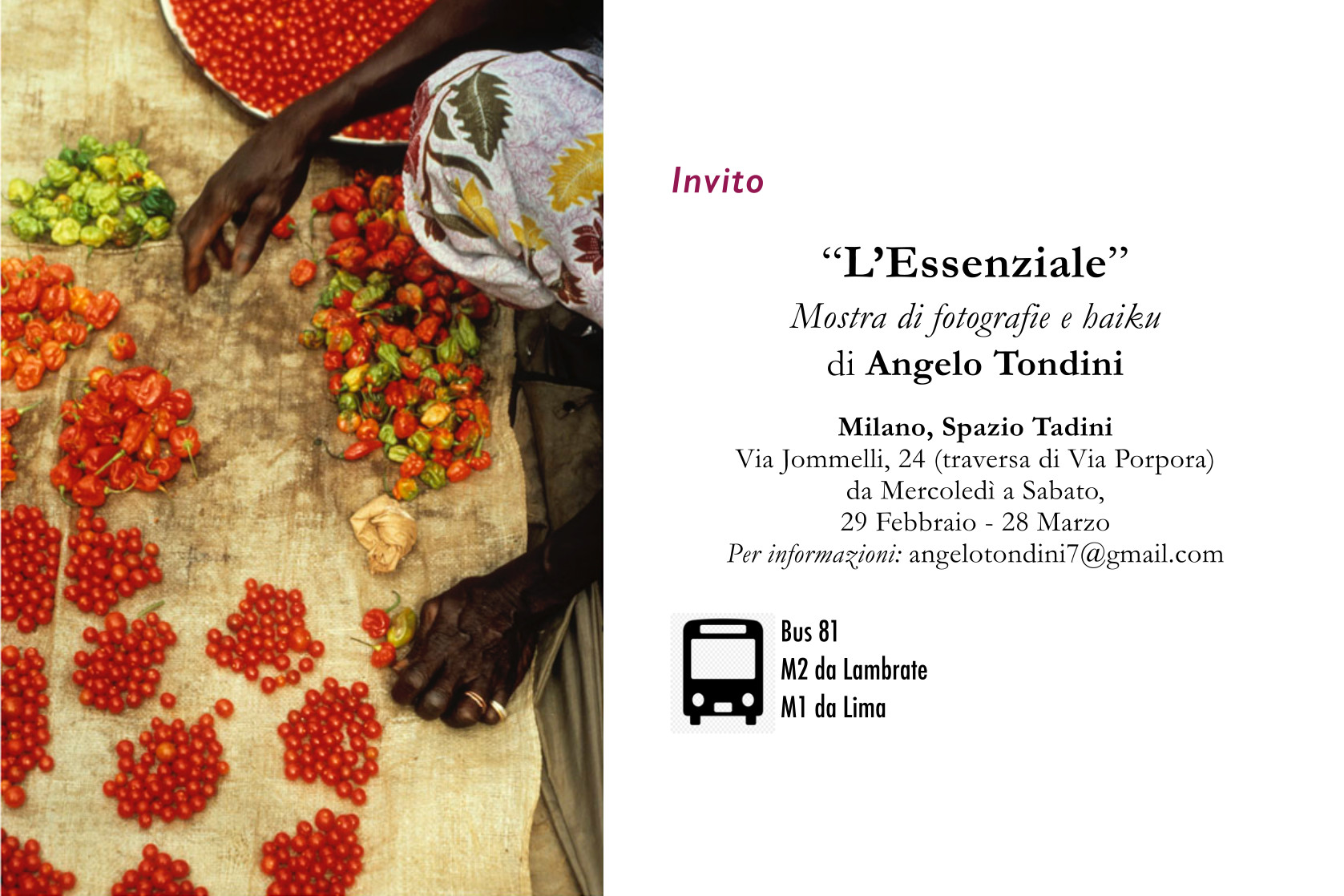 Fotografia e haiku di Angelo Tondini – l'essenziale
